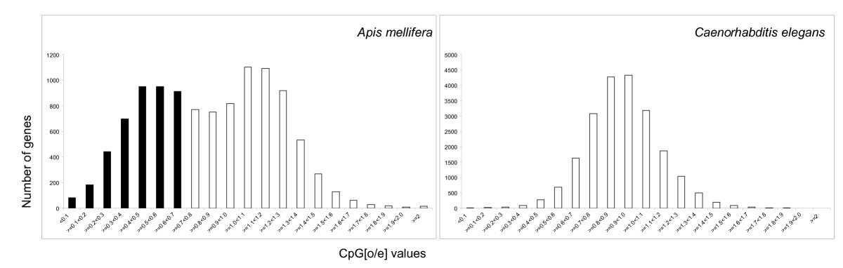 https://static-content.springer.com/image/art%3A10.1186%2F1471-2164-10-472/MediaObjects/12864_2009_Article_2356_Fig1_HTML.jpg