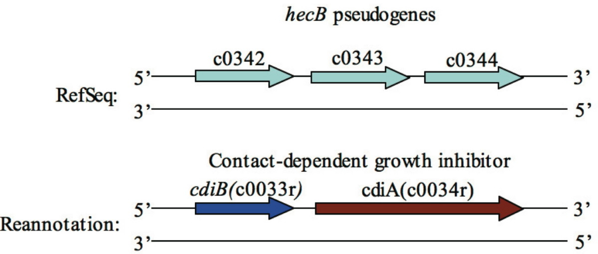 https://static-content.springer.com/image/art%3A10.1186%2F1471-2164-10-552/MediaObjects/12864_2009_Article_2436_Fig1_HTML.jpg
