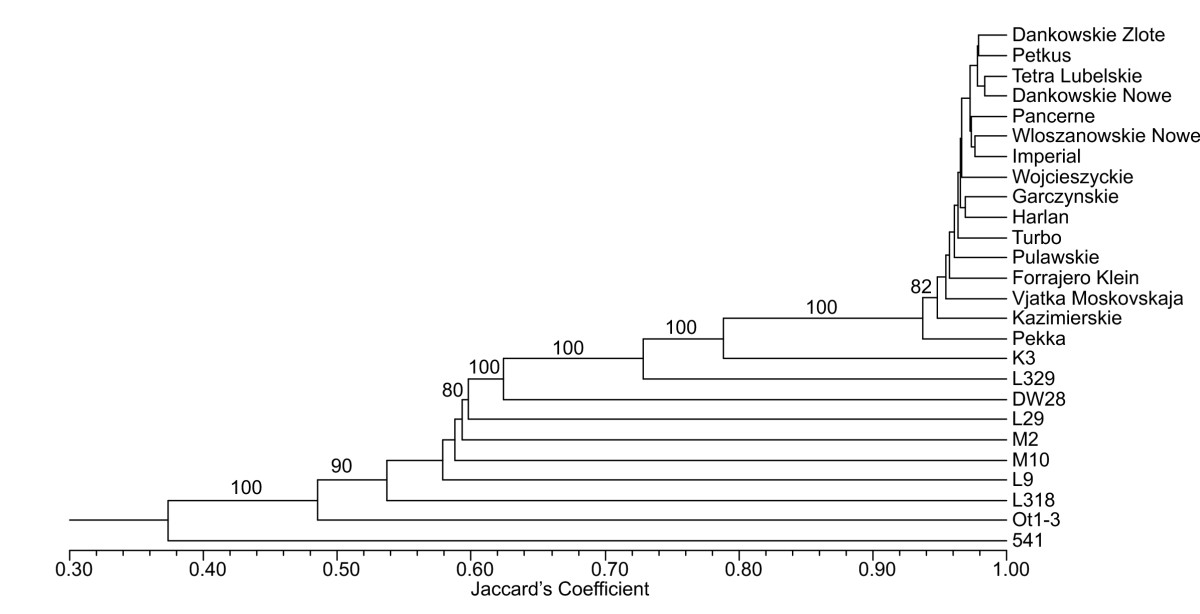 https://static-content.springer.com/image/art%3A10.1186%2F1471-2164-10-578/MediaObjects/12864_2008_Article_2462_Fig1_HTML.jpg