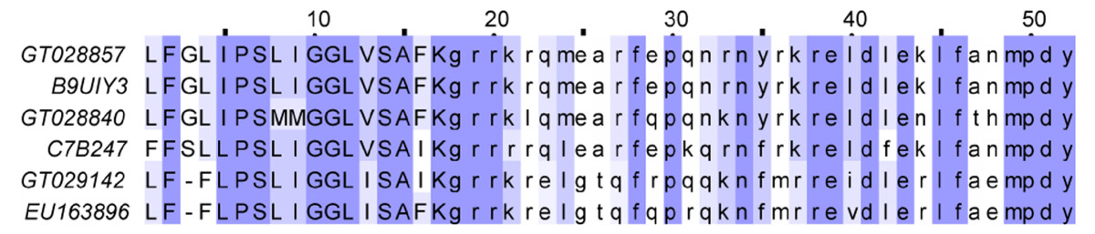 https://static-content.springer.com/image/art%3A10.1186%2F1471-2164-11-452/MediaObjects/12864_2010_Article_3046_Fig8_HTML.jpg
