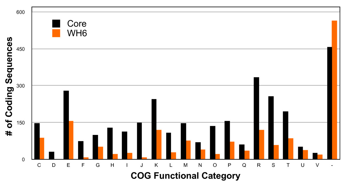 https://static-content.springer.com/image/art%3A10.1186%2F1471-2164-11-522/MediaObjects/12864_2010_Article_3116_Fig4_HTML.jpg