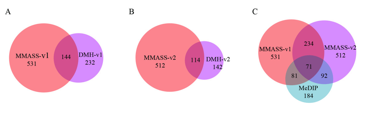 https://static-content.springer.com/image/art%3A10.1186%2F1471-2164-12-10/MediaObjects/12864_2010_Article_3149_Fig2_HTML.jpg