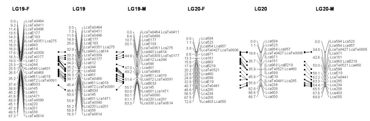 https://static-content.springer.com/image/art%3A10.1186%2F1471-2164-12-174/MediaObjects/12864_2010_3313_Fig10_HTML.jpg