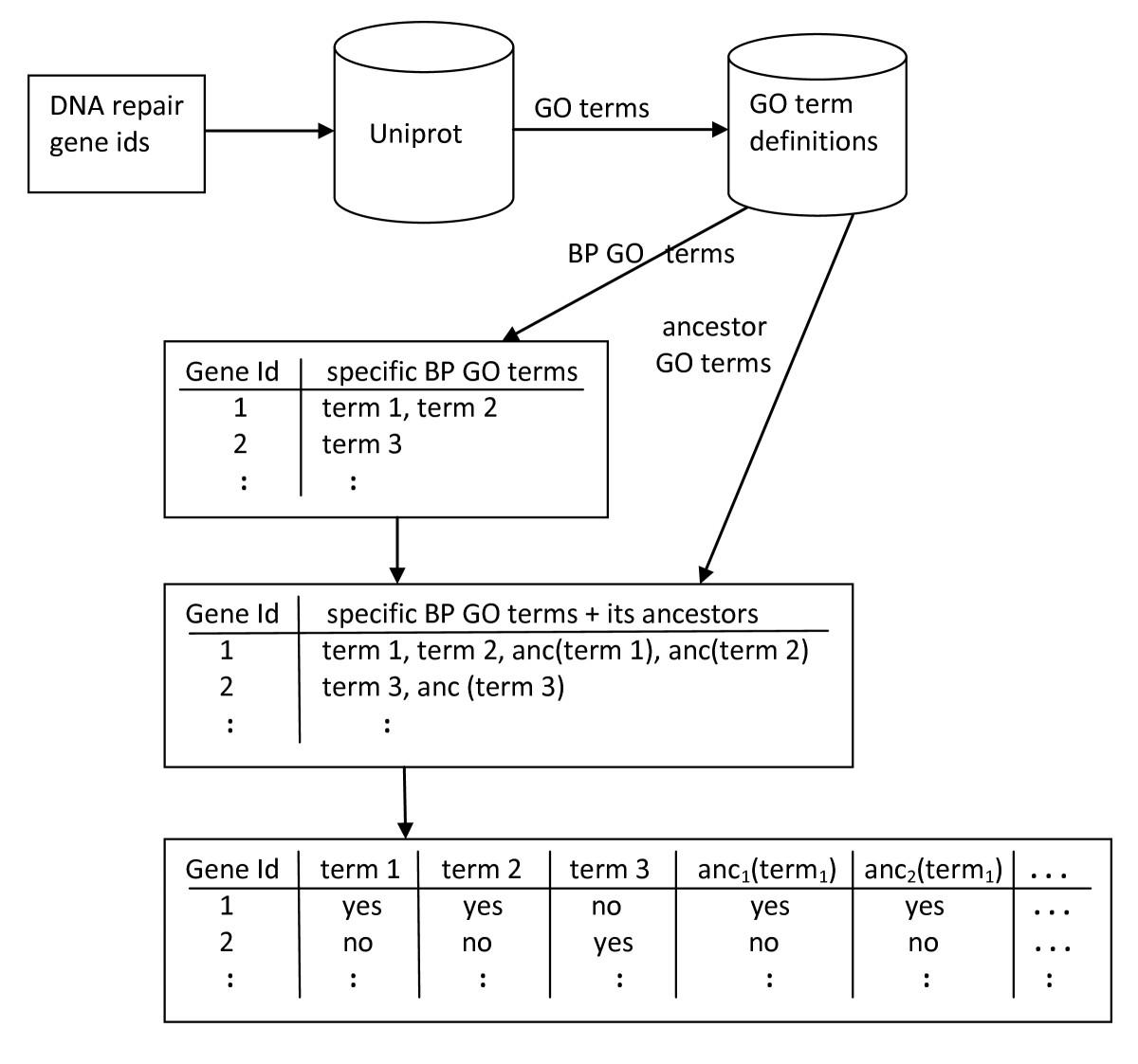 https://static-content.springer.com/image/art%3A10.1186%2F1471-2164-12-27/MediaObjects/12864_2010_3166_Fig2_HTML.jpg