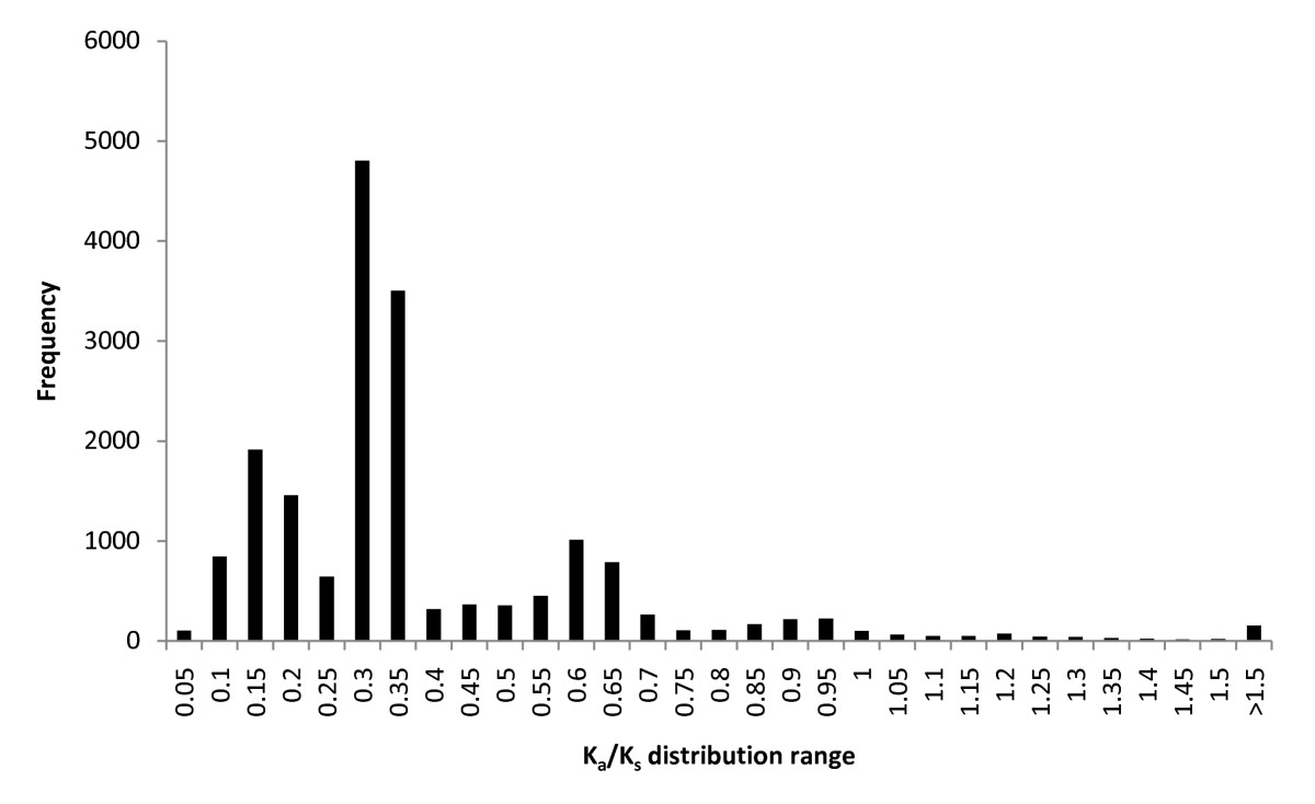 https://static-content.springer.com/image/art%3A10.1186%2F1471-2164-12-370/MediaObjects/12864_2010_Article_3506_Fig6_HTML.jpg