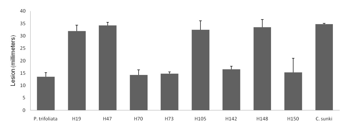 https://static-content.springer.com/image/art%3A10.1186%2F1471-2164-12-39/MediaObjects/12864_2010_Article_3178_Fig1_HTML.jpg