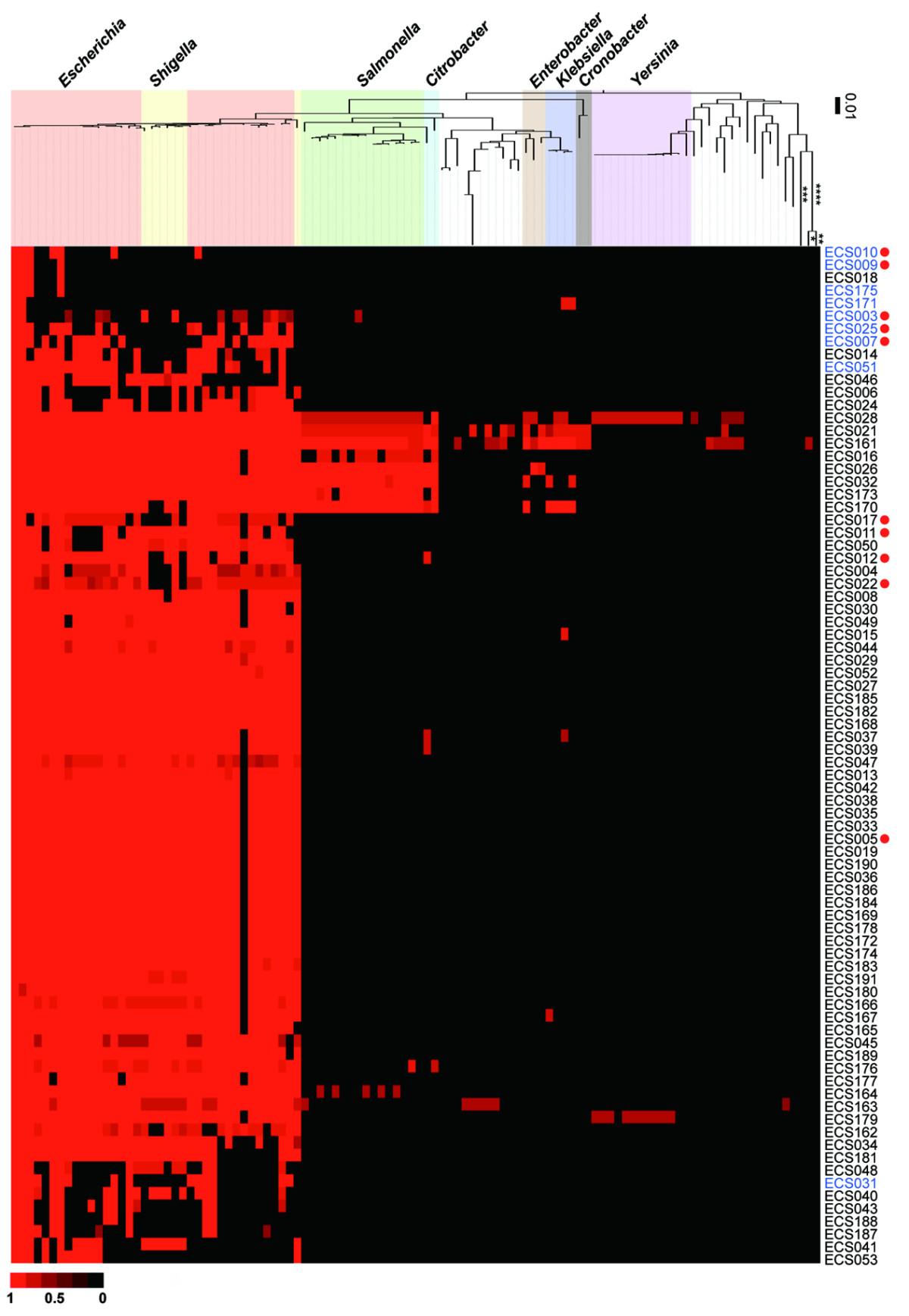 https://static-content.springer.com/image/art%3A10.1186%2F1471-2164-12-428/MediaObjects/12864_2011_3578_Fig5_HTML.jpg
