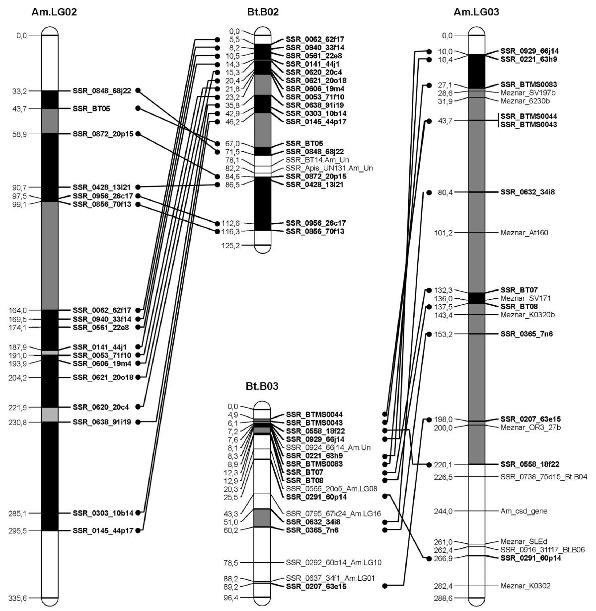 https://static-content.springer.com/image/art%3A10.1186%2F1471-2164-12-48/MediaObjects/12864_2010_3187_Fig2_HTML.jpg