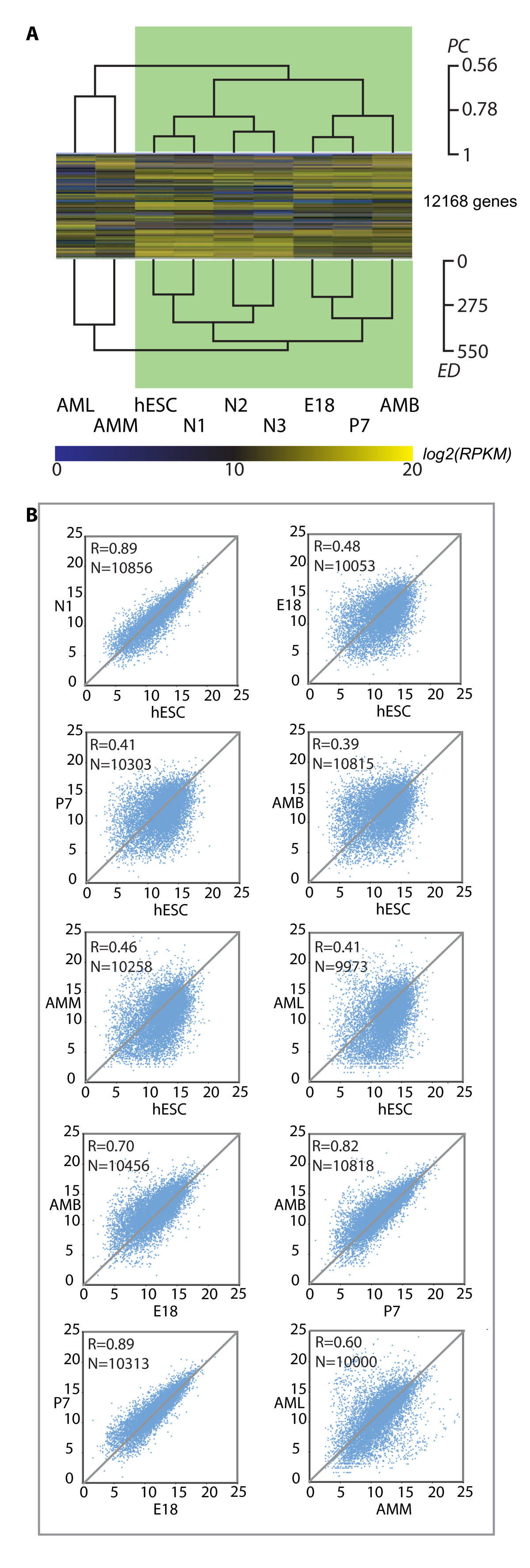 https://static-content.springer.com/image/art%3A10.1186%2F1471-2164-12-494/MediaObjects/12864_2011_Article_3639_Fig5_HTML.jpg