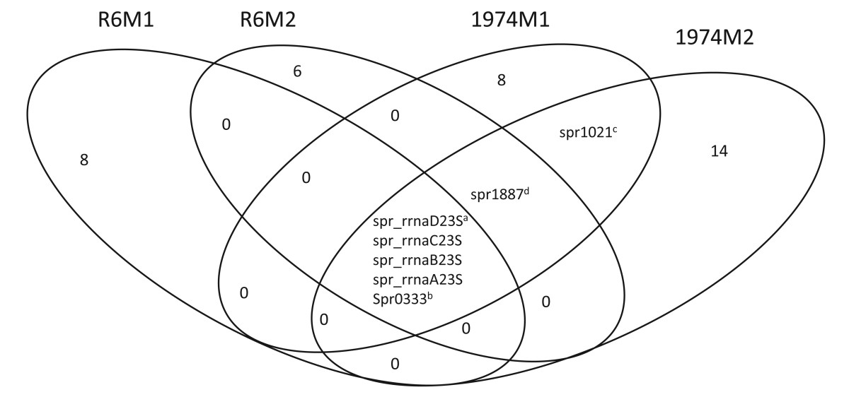 https://static-content.springer.com/image/art%3A10.1186%2F1471-2164-12-512/MediaObjects/12864_2011_Article_3661_Fig1_HTML.jpg