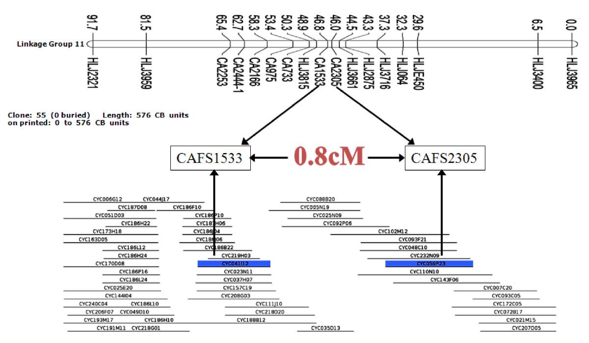 https://static-content.springer.com/image/art%3A10.1186%2F1471-2164-12-537/MediaObjects/12864_2011_3684_Fig3_HTML.jpg