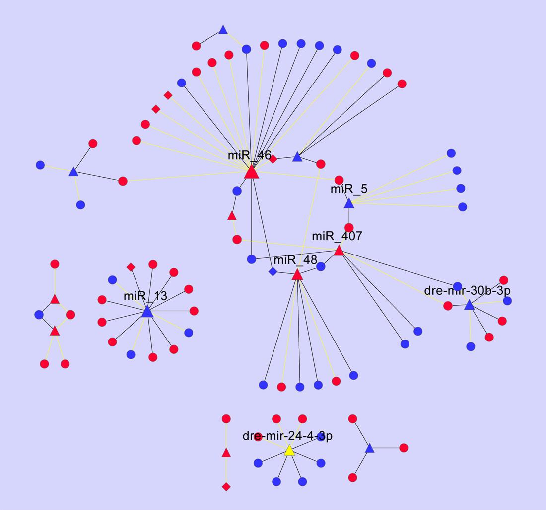 https://static-content.springer.com/image/art%3A10.1186%2F1471-2164-12-605/MediaObjects/12864_2011_3787_Fig6_HTML.jpg