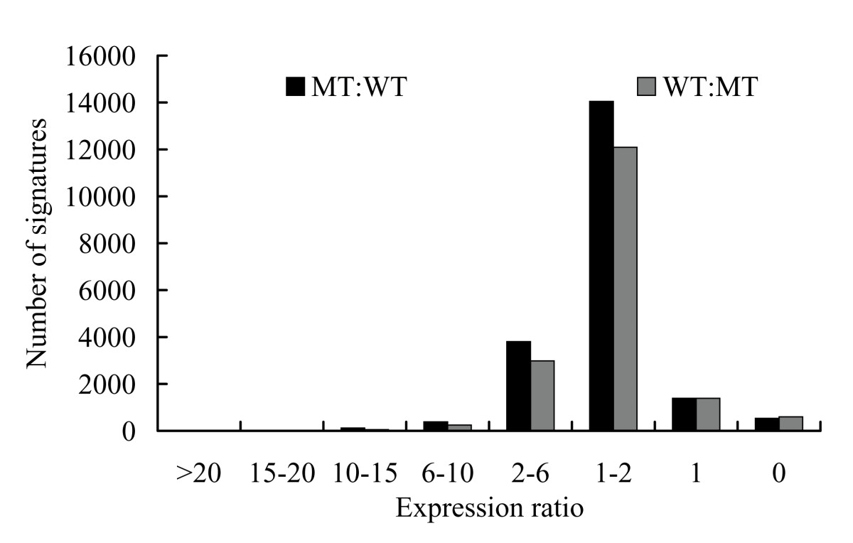 https://static-content.springer.com/image/art%3A10.1186%2F1471-2164-12-63/MediaObjects/12864_2010_Article_3200_Fig3_HTML.jpg