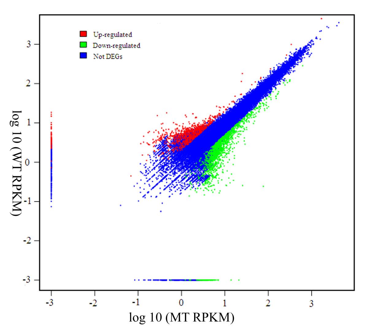 https://static-content.springer.com/image/art%3A10.1186%2F1471-2164-12-63/MediaObjects/12864_2010_Article_3200_Fig4_HTML.jpg