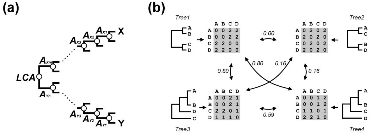 https://static-content.springer.com/image/art%3A10.1186%2F1471-2164-13-157/MediaObjects/12864_2011_Article_3987_Fig7_HTML.jpg