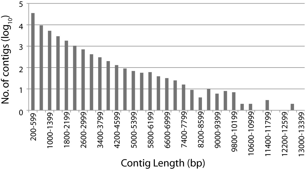 https://static-content.springer.com/image/art%3A10.1186%2F1471-2164-13-271/MediaObjects/12864_2012_Article_4105_Fig1_HTML.jpg