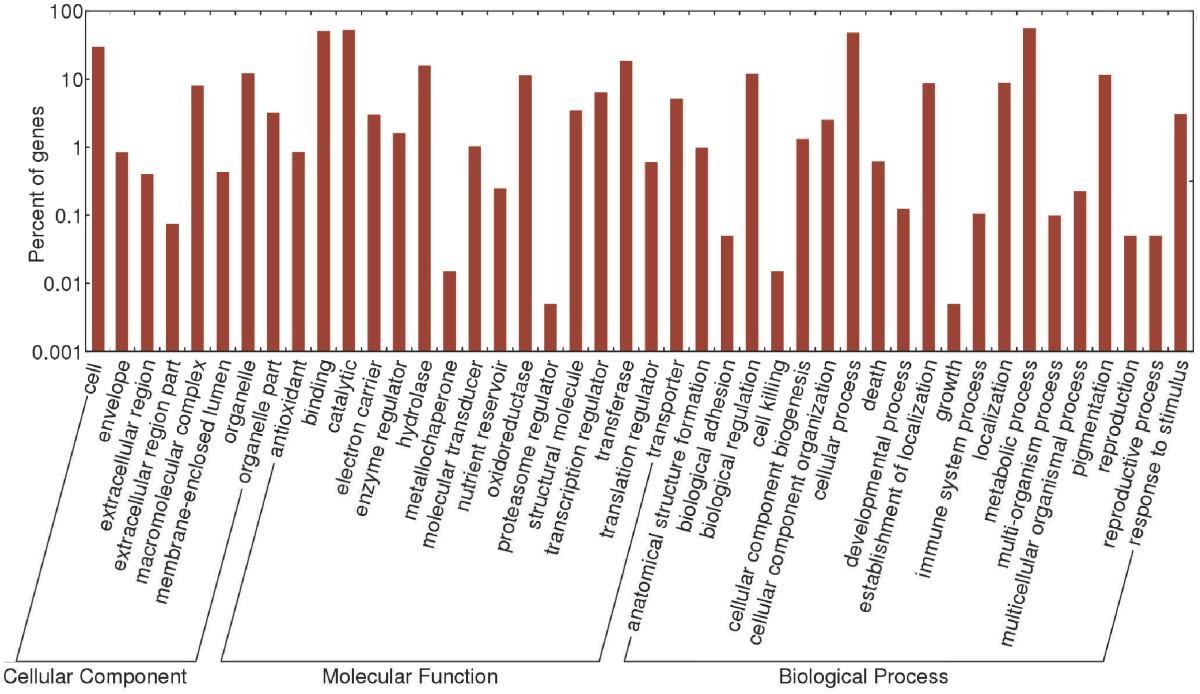 https://static-content.springer.com/image/art%3A10.1186%2F1471-2164-13-302/MediaObjects/12864_2011_Article_4106_Fig2_HTML.jpg