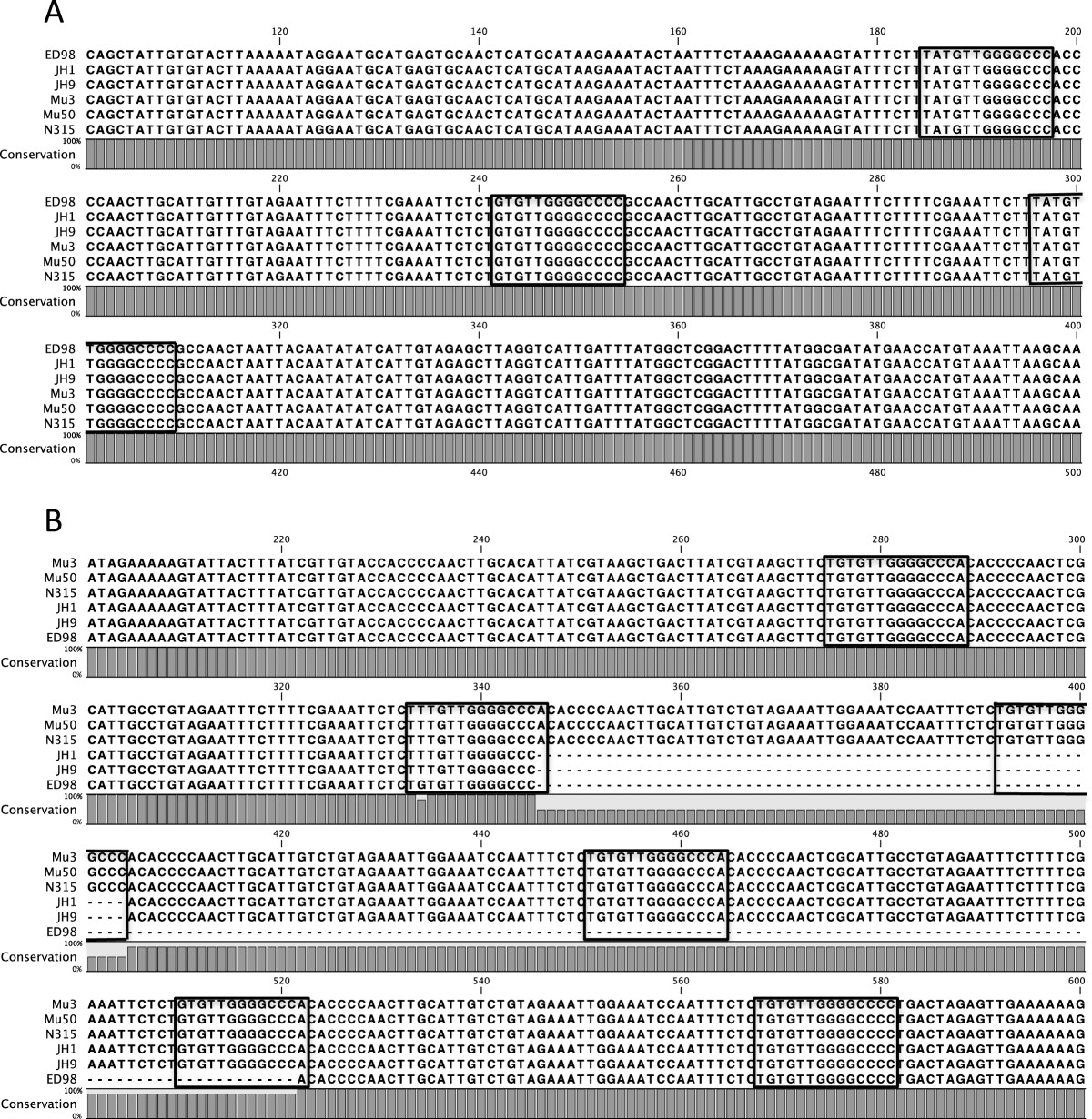 https://static-content.springer.com/image/art%3A10.1186%2F1471-2164-13-515/MediaObjects/12864_2012_Article_4486_Fig6_HTML.jpg