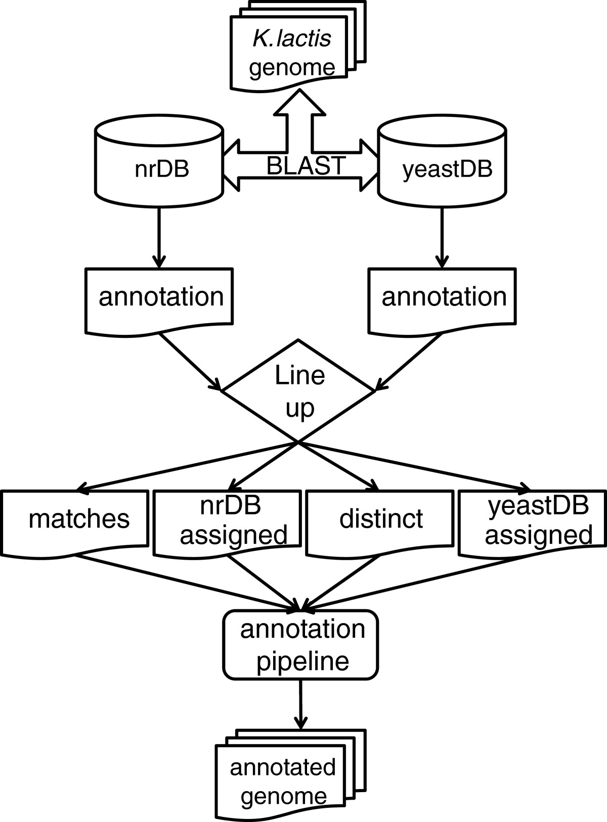 https://static-content.springer.com/image/art%3A10.1186%2F1471-2164-13-517/MediaObjects/12864_2012_Article_7092_Fig2_HTML.jpg