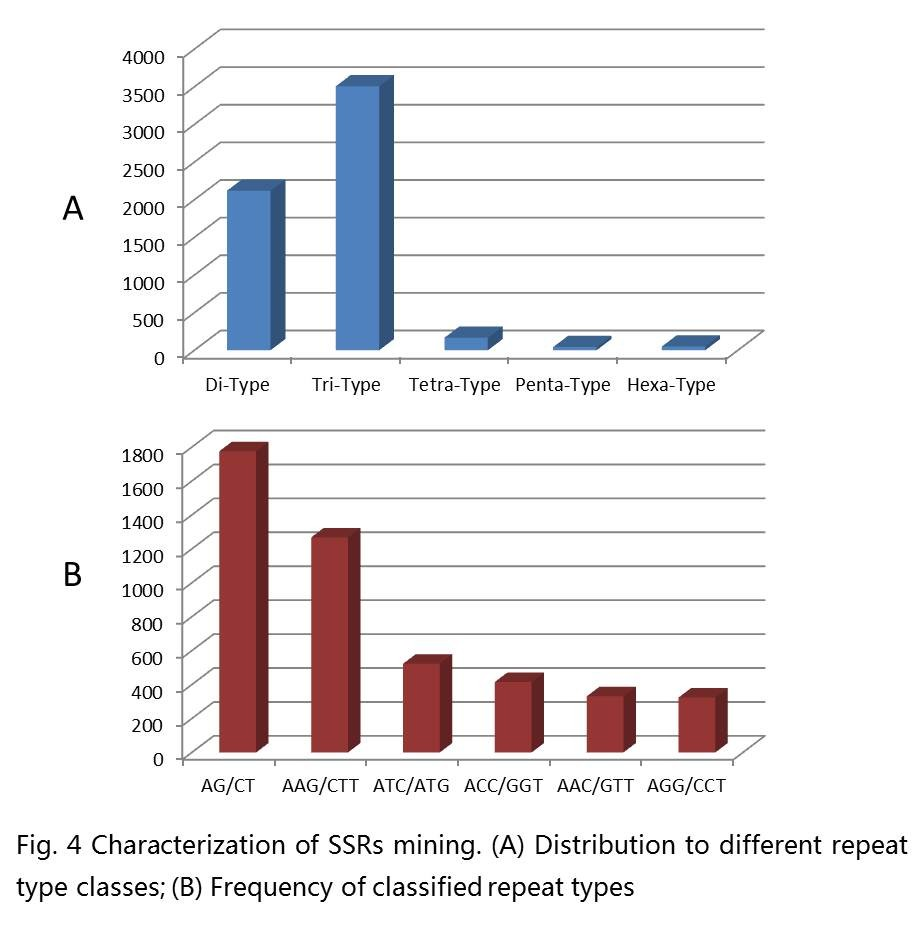 https://static-content.springer.com/image/art%3A10.1186%2F1471-2164-13-90/MediaObjects/12864_2011_Article_3972_Fig4_HTML.jpg