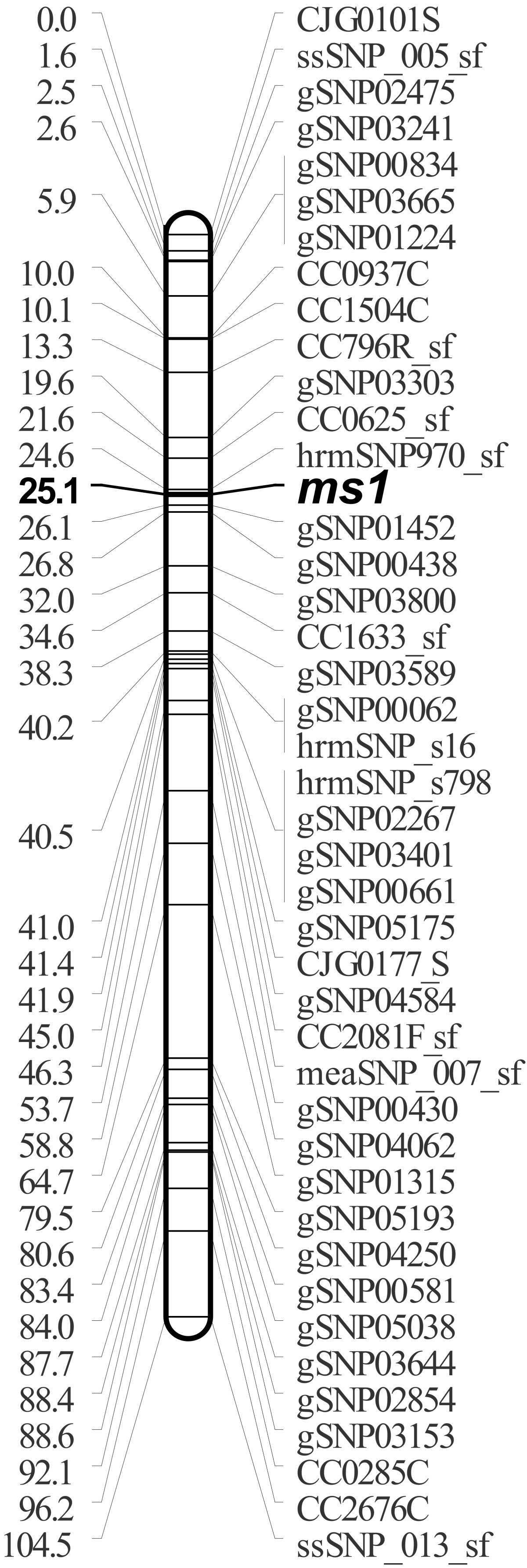 https://static-content.springer.com/image/art%3A10.1186%2F1471-2164-13-95/MediaObjects/12864_2011_Article_4038_Fig5_HTML.jpg