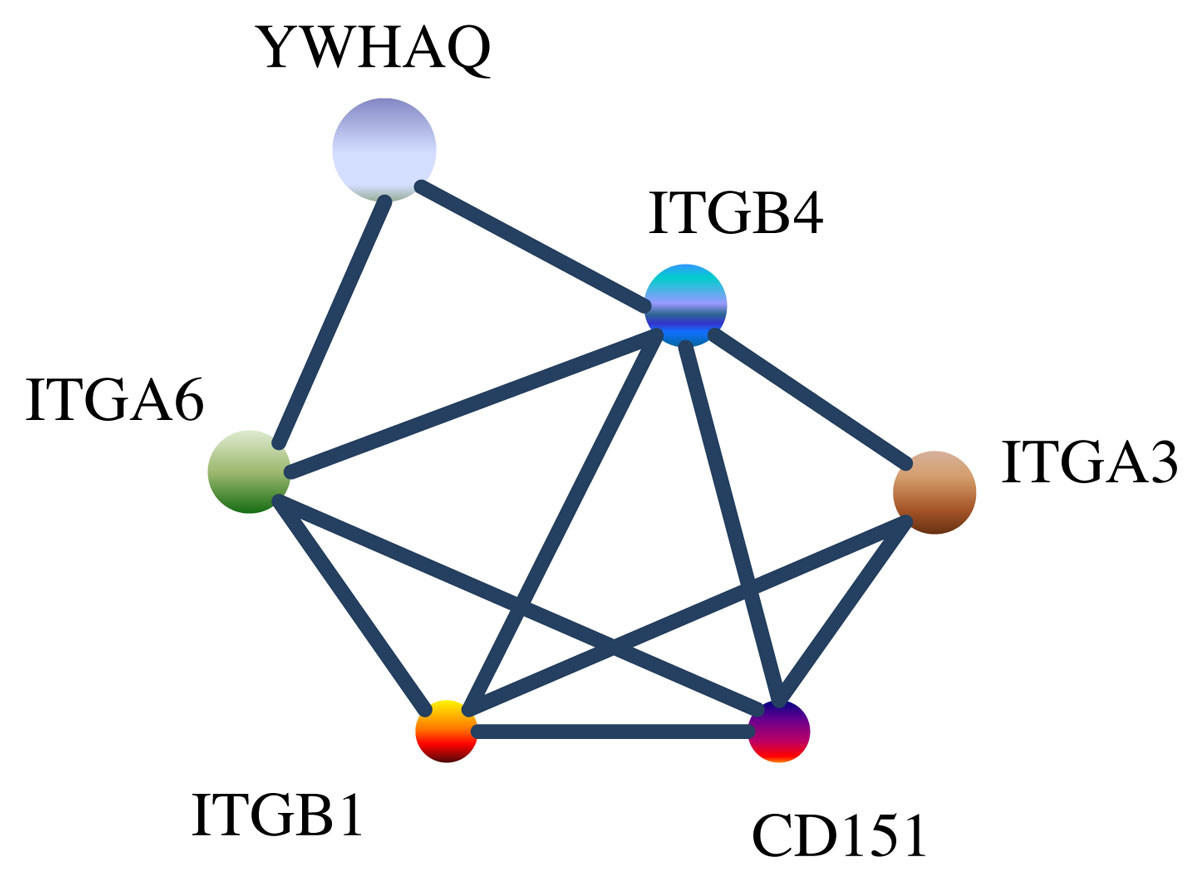 https://static-content.springer.com/image/art%3A10.1186%2F1471-2164-13-S6-S9/MediaObjects/12864_2012_Article_4307_Fig1_HTML.jpg
