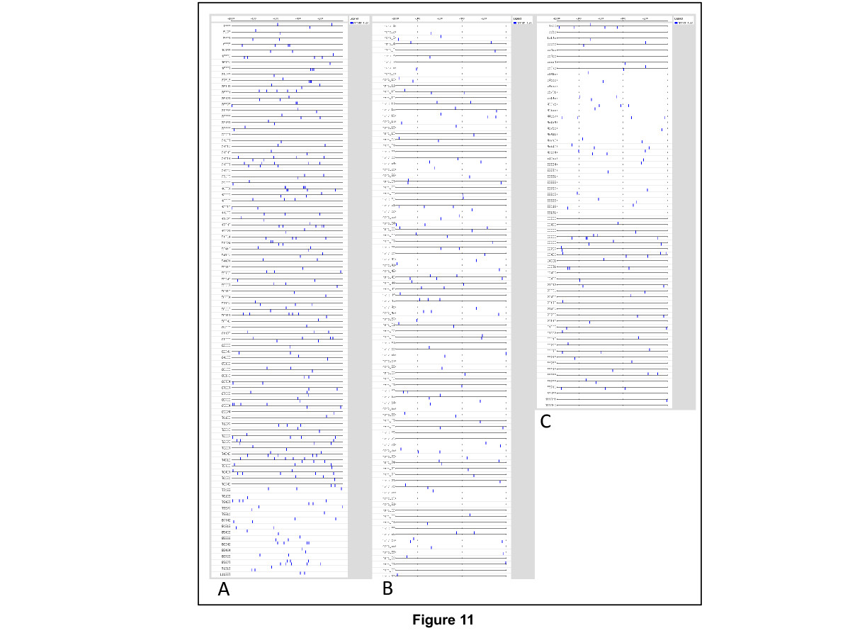 https://static-content.springer.com/image/art%3A10.1186%2F1471-2164-14-138/MediaObjects/12864_2012_Article_4880_Fig11_HTML.jpg