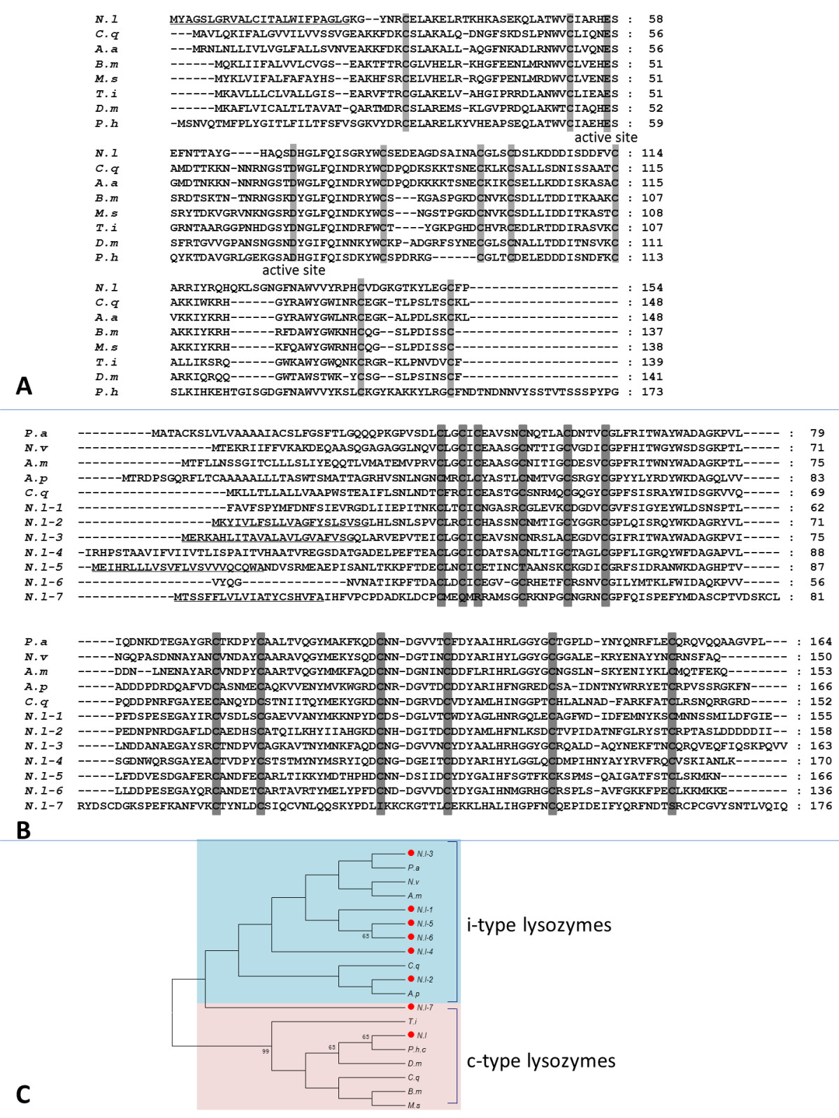 https://static-content.springer.com/image/art%3A10.1186%2F1471-2164-14-160/MediaObjects/12864_2012_Article_4871_Fig12_HTML.jpg
