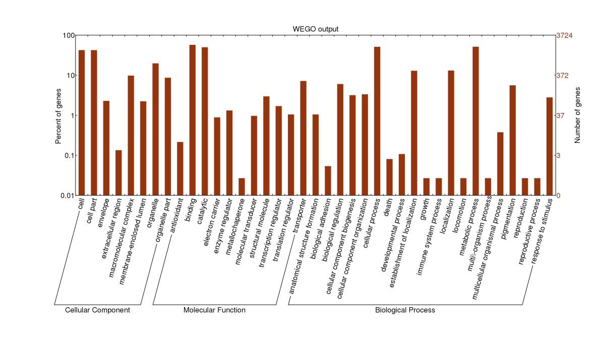 https://static-content.springer.com/image/art%3A10.1186%2F1471-2164-14-168/MediaObjects/12864_2012_Article_4843_Fig3_HTML.jpg