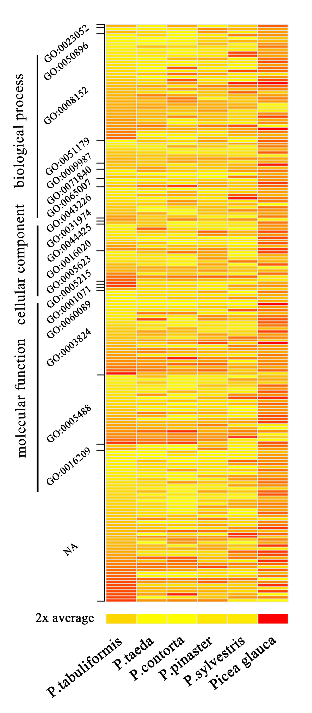 https://static-content.springer.com/image/art%3A10.1186%2F1471-2164-14-263/MediaObjects/12864_2012_Article_4960_Fig6_HTML.jpg