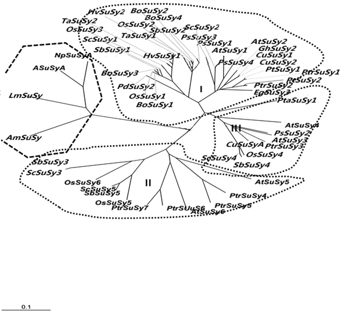 https://static-content.springer.com/image/art%3A10.1186%2F1471-2164-14-314/MediaObjects/12864_2012_Article_5045_Fig3_HTML.jpg