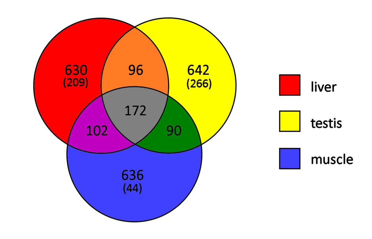 https://static-content.springer.com/image/art%3A10.1186%2F1471-2164-14-538/MediaObjects/12864_2012_Article_5247_Fig8_HTML.jpg