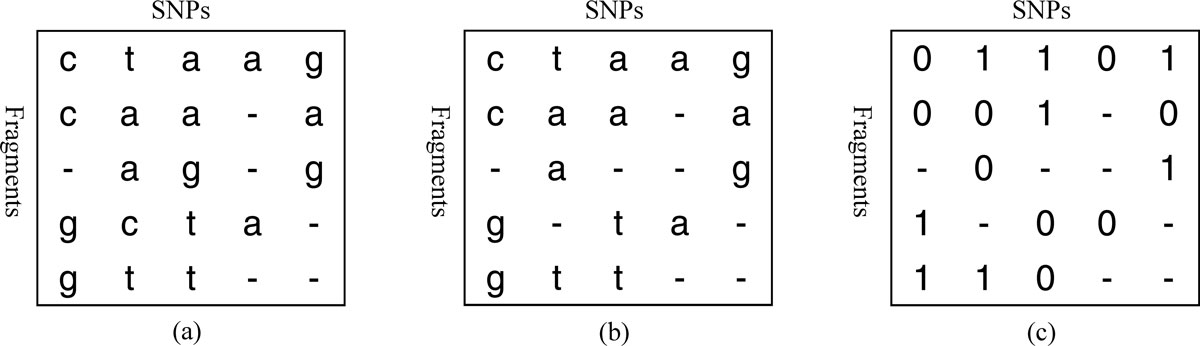 https://static-content.springer.com/image/art%3A10.1186%2F1471-2164-14-S2-S2/MediaObjects/12864_2013_Article_4728_Fig1_HTML.jpg