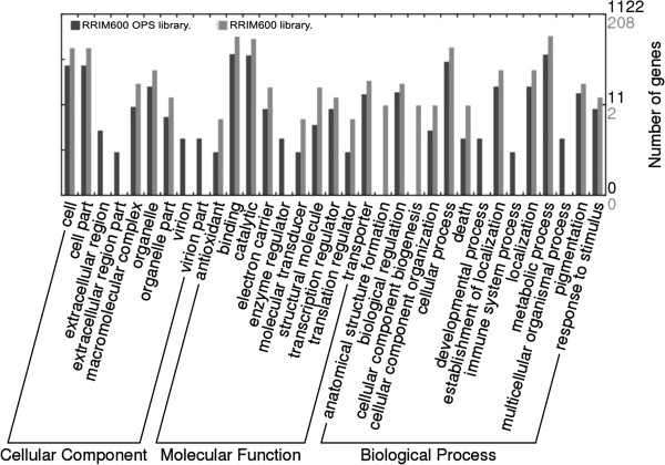 https://static-content.springer.com/image/art%3A10.1186%2F1471-2164-15-236/MediaObjects/12864_2013_Article_5958_Fig3_HTML.jpg