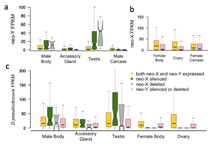 https://static-content.springer.com/image/art%3A10.1186%2F1471-2164-15-241/MediaObjects/12864_2013_Article_5799_Fig6_HTML.jpg