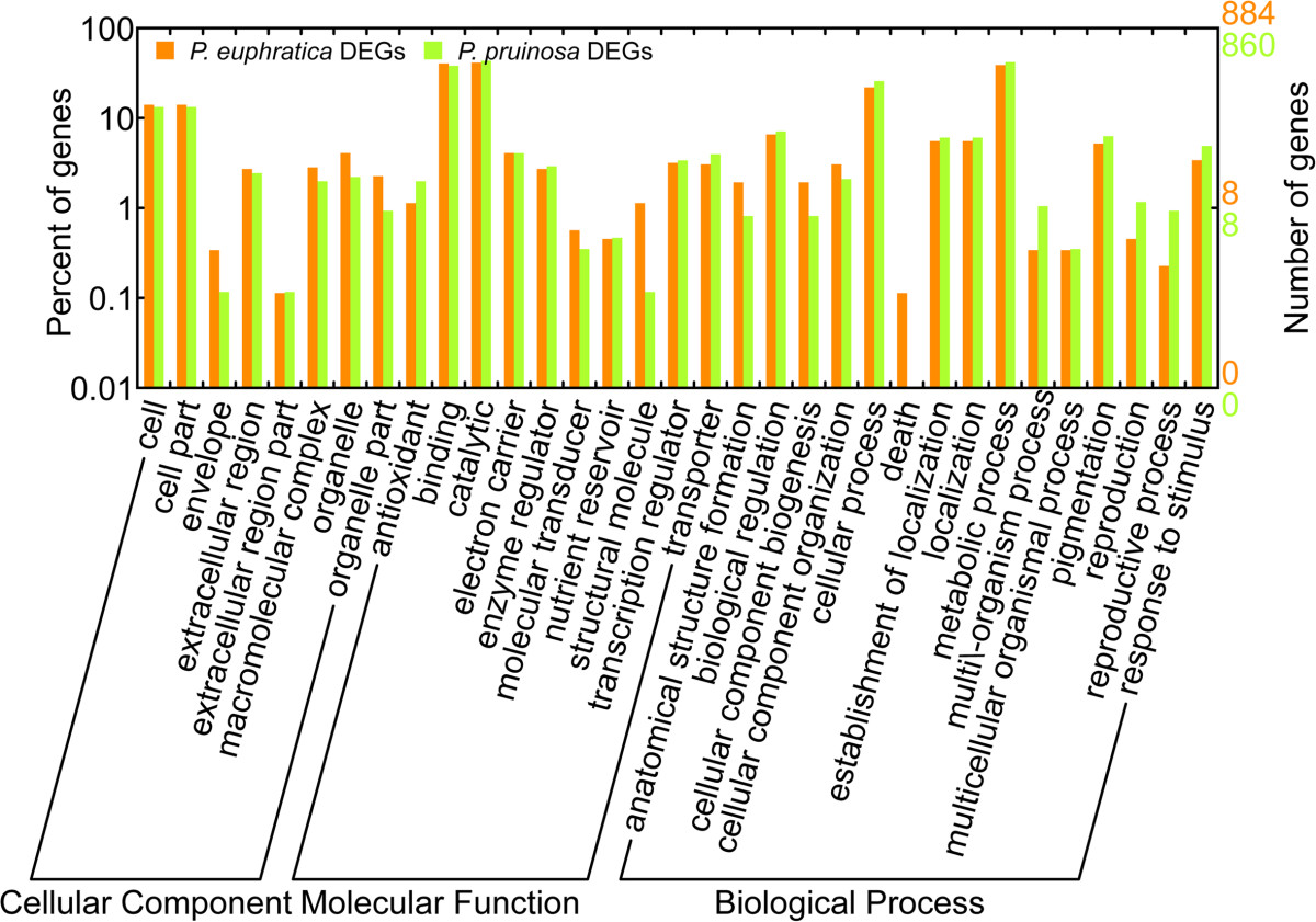 https://static-content.springer.com/image/art%3A10.1186%2F1471-2164-15-337/MediaObjects/12864_2013_Article_6035_Fig5_HTML.jpg
