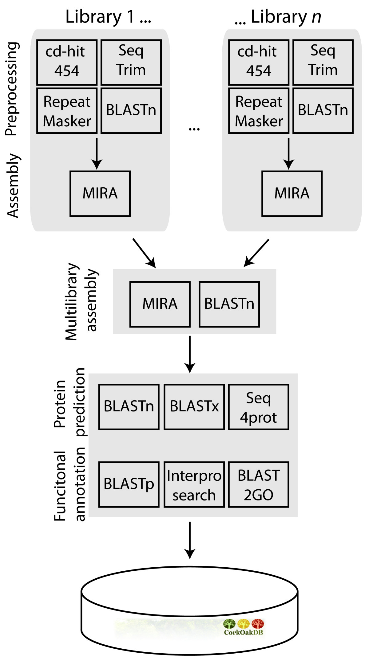 https://static-content.springer.com/image/art%3A10.1186%2F1471-2164-15-371/MediaObjects/12864_2013_Article_6135_Fig1_HTML.jpg