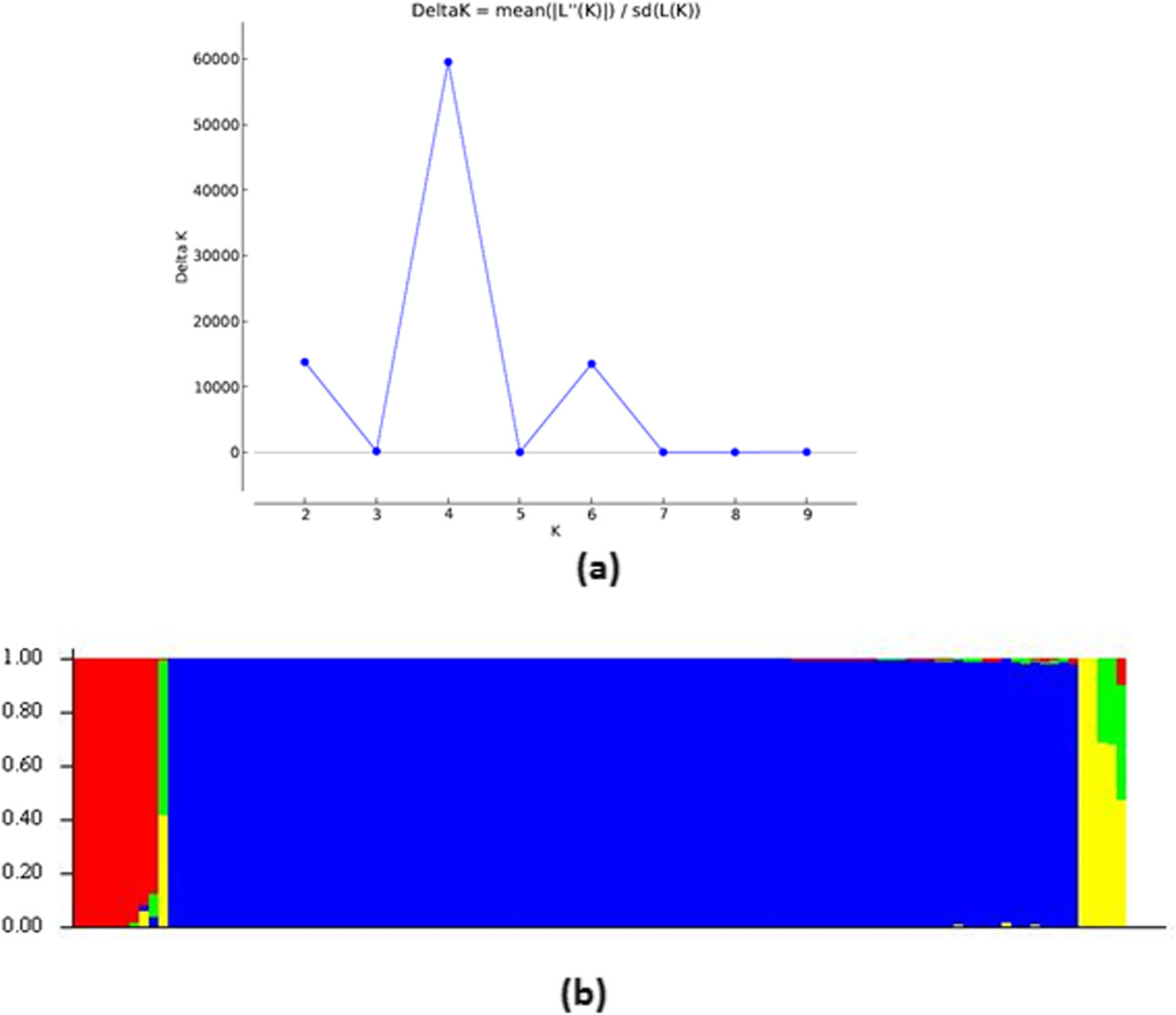 https://static-content.springer.com/image/art%3A10.1186%2F1471-2164-15-454/MediaObjects/12864_2014_Article_6145_Fig6_HTML.jpg