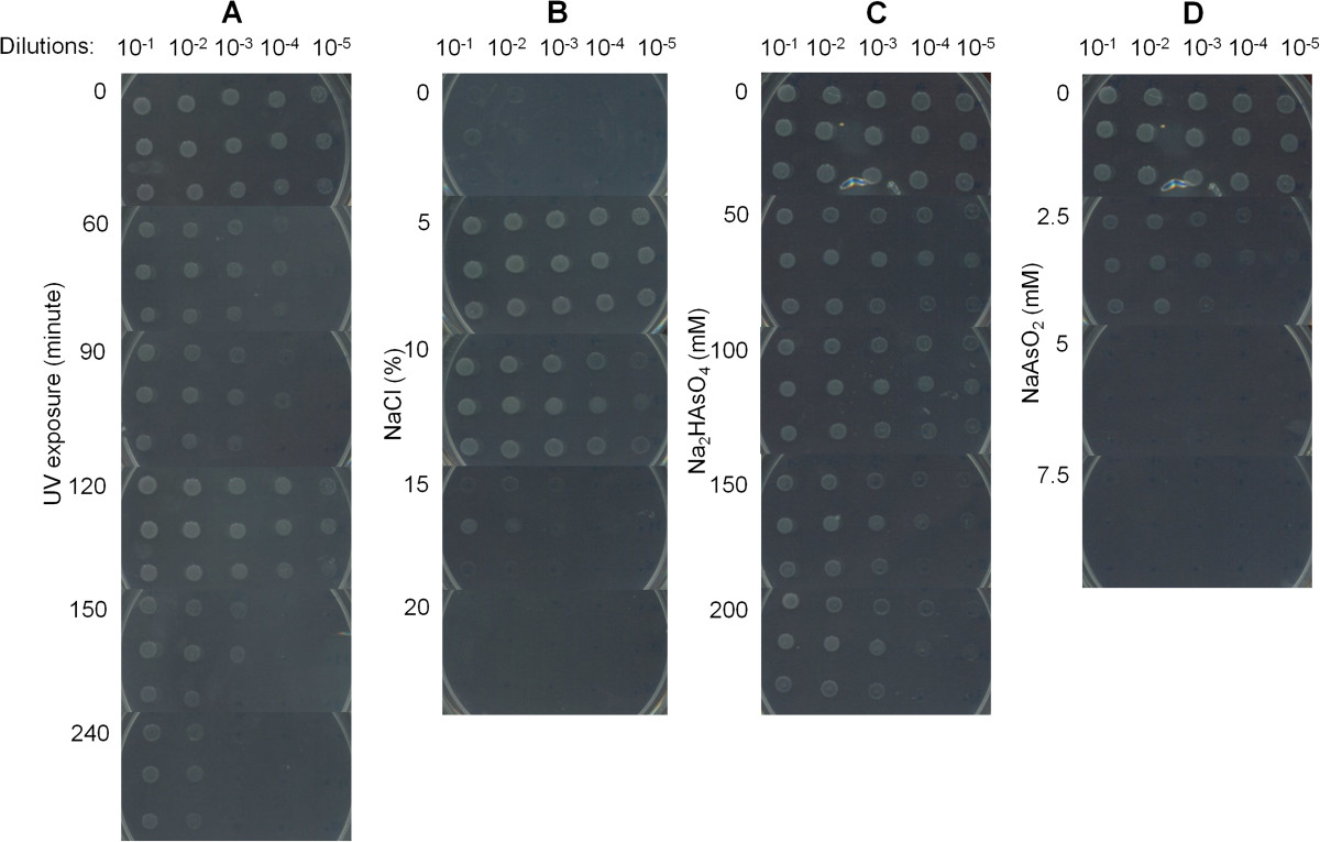 https://static-content.springer.com/image/art%3A10.1186%2F1471-2164-15-473/MediaObjects/12864_2013_Article_6227_Fig4_HTML.jpg