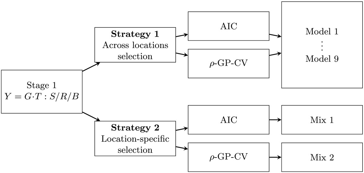 https://static-content.springer.com/image/art%3A10.1186%2F1471-2164-15-646/MediaObjects/12864_2014_Article_6343_Fig3_HTML.jpg
