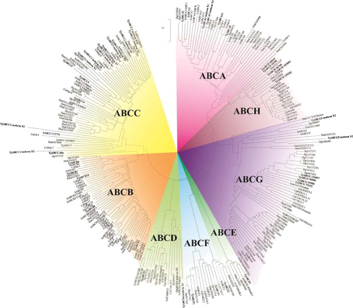 https://static-content.springer.com/image/art%3A10.1186%2F1471-2164-15-651/MediaObjects/12864_2014_Article_6676_Fig1_HTML.jpg