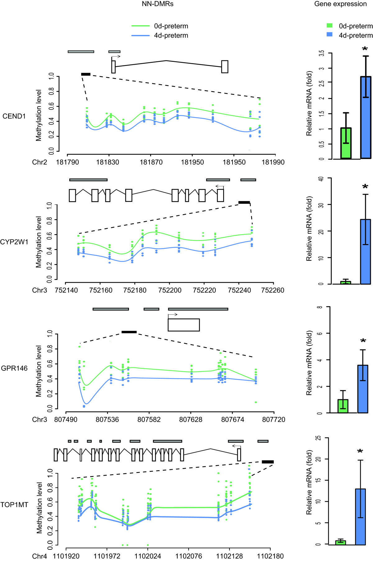 https://static-content.springer.com/image/art%3A10.1186%2F1471-2164-15-716/MediaObjects/12864_2014_Article_6393_Fig4_HTML.jpg