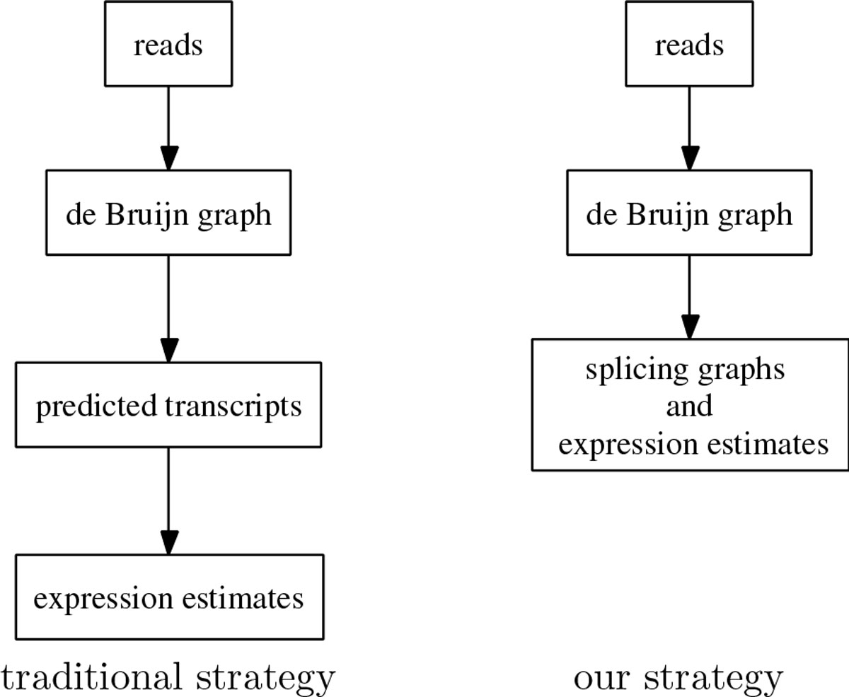 https://static-content.springer.com/image/art%3A10.1186%2F1471-2164-15-S5-S6/MediaObjects/12864_2014_Article_6254_Fig1_HTML.jpg