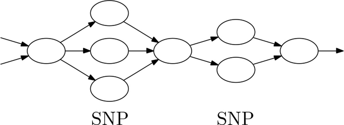 https://static-content.springer.com/image/art%3A10.1186%2F1471-2164-15-S5-S6/MediaObjects/12864_2014_Article_6254_Fig2_HTML.jpg