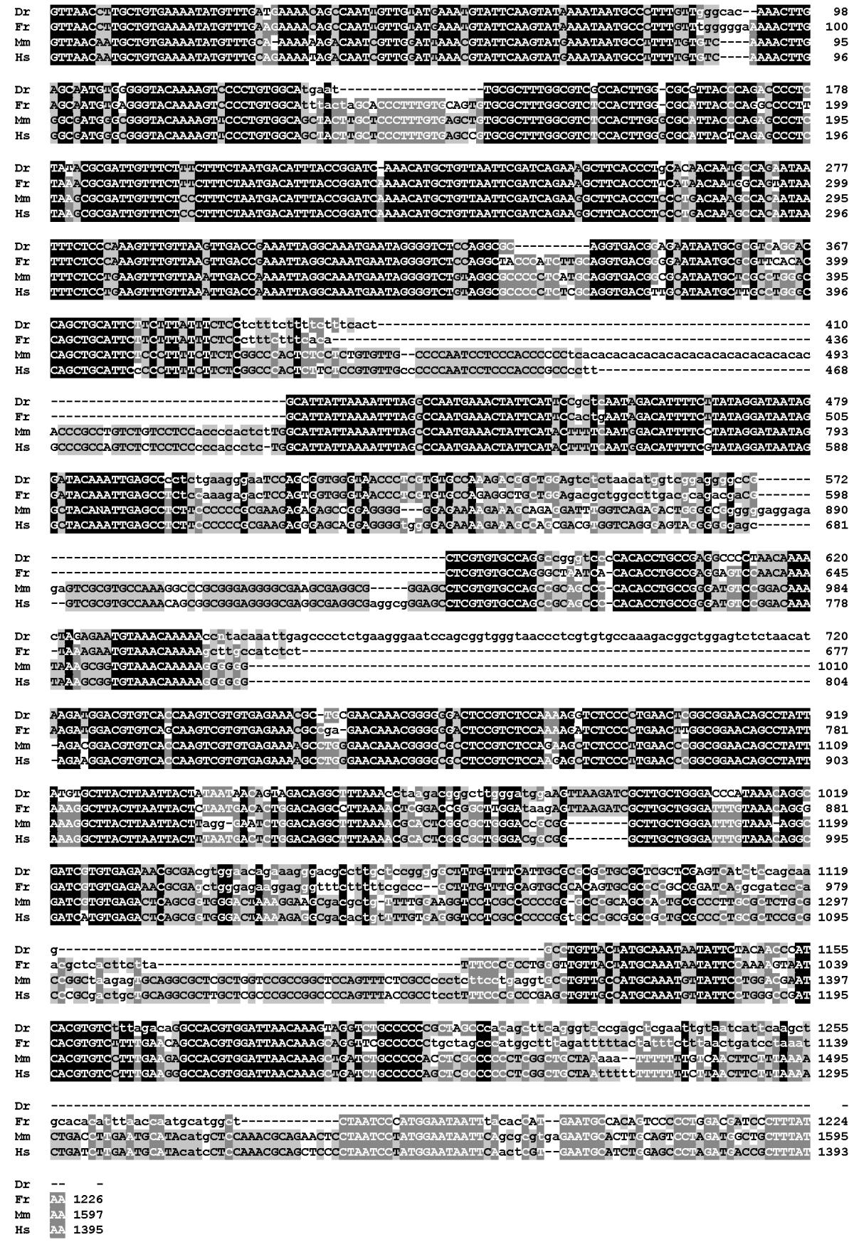 https://static-content.springer.com/image/art%3A10.1186%2F1471-2164-3-21/MediaObjects/12864_2002_Article_34_Fig6_HTML.jpg