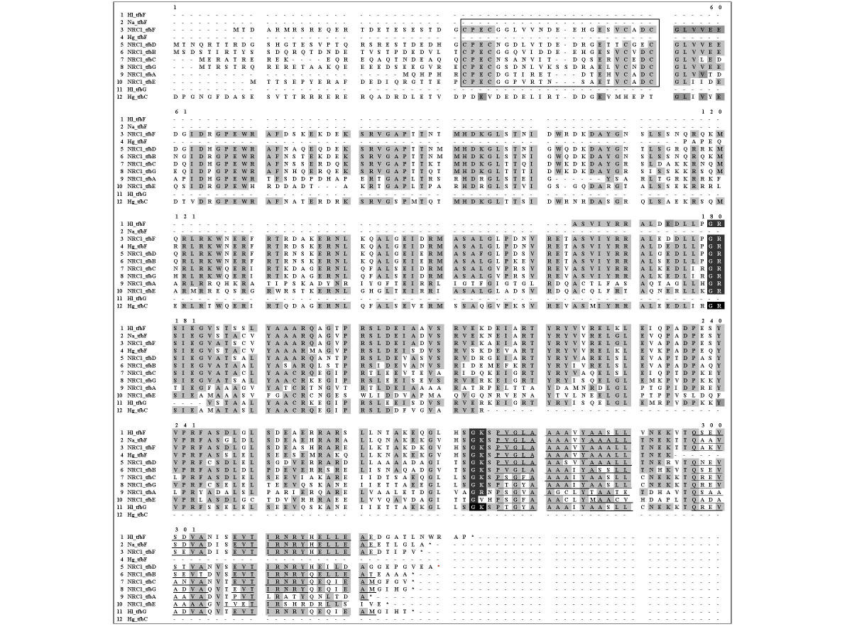 https://static-content.springer.com/image/art%3A10.1186%2F1471-2164-5-3/MediaObjects/12864_2003_Article_105_Fig6_HTML.jpg
