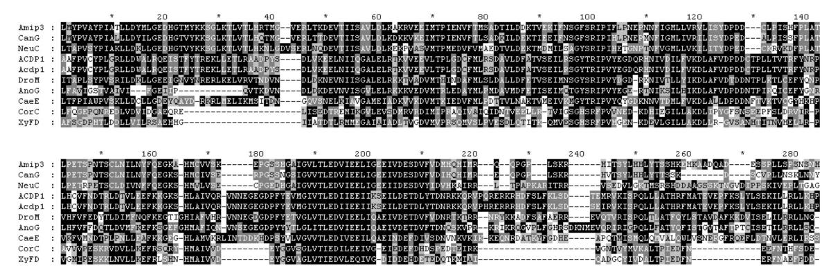https://static-content.springer.com/image/art%3A10.1186%2F1471-2164-5-7/MediaObjects/12864_2003_Article_109_Fig3_HTML.jpg