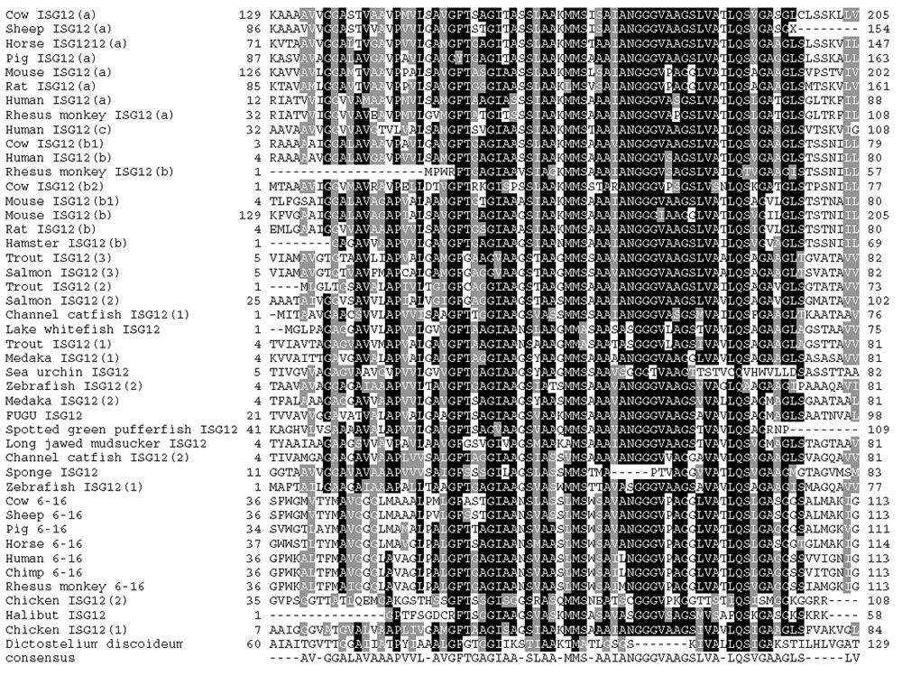 https://static-content.springer.com/image/art%3A10.1186%2F1471-2164-5-8/MediaObjects/12864_2003_Article_110_Fig1_HTML.jpg