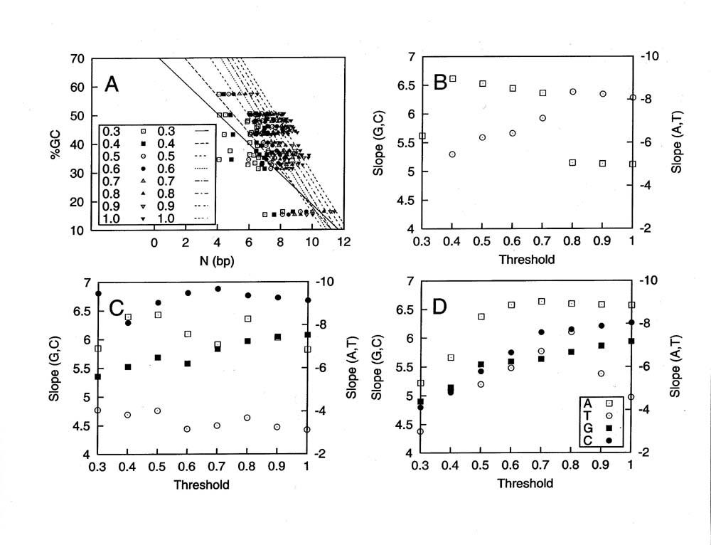 https://static-content.springer.com/image/art%3A10.1186%2F1471-2164-5-95/MediaObjects/12864_2004_Article_197_Fig7_HTML.jpg