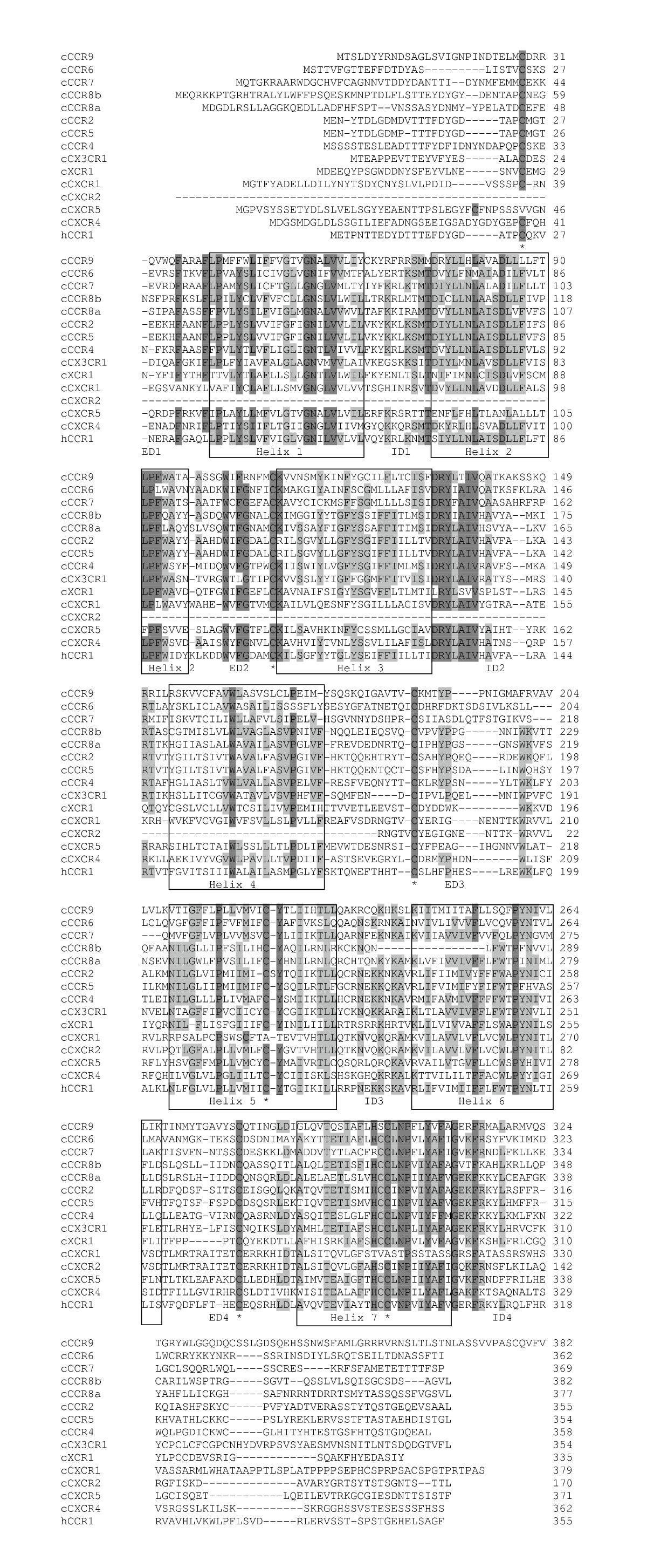 https://static-content.springer.com/image/art%3A10.1186%2F1471-2164-6-45/MediaObjects/12864_2004_Article_246_Fig4_HTML.jpg